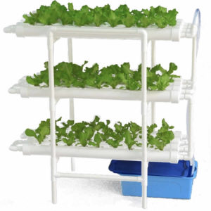 Home Hydroponic System buy online