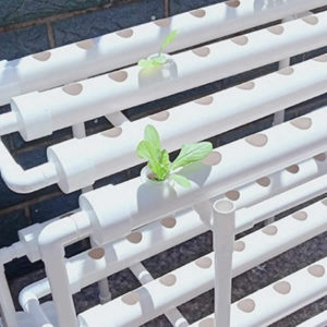 where to buy Hydroponics Kits Quick Easy online